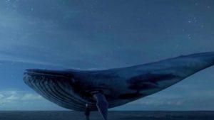 Loja e rrezikshme  balena e kaltër