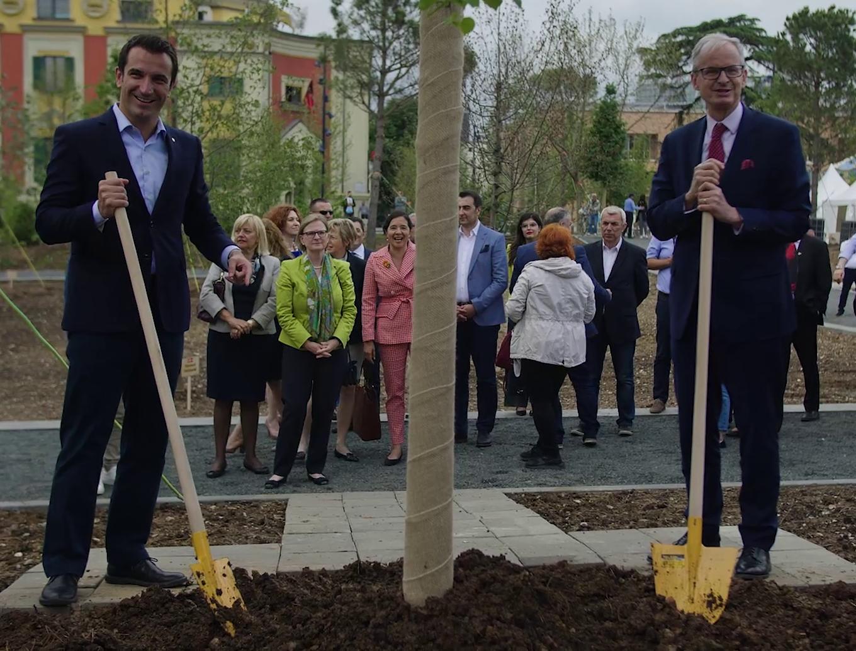 Billedresultat for Veliaj e përfaqësues të BE mbjellin pemë për Ditën e Europës