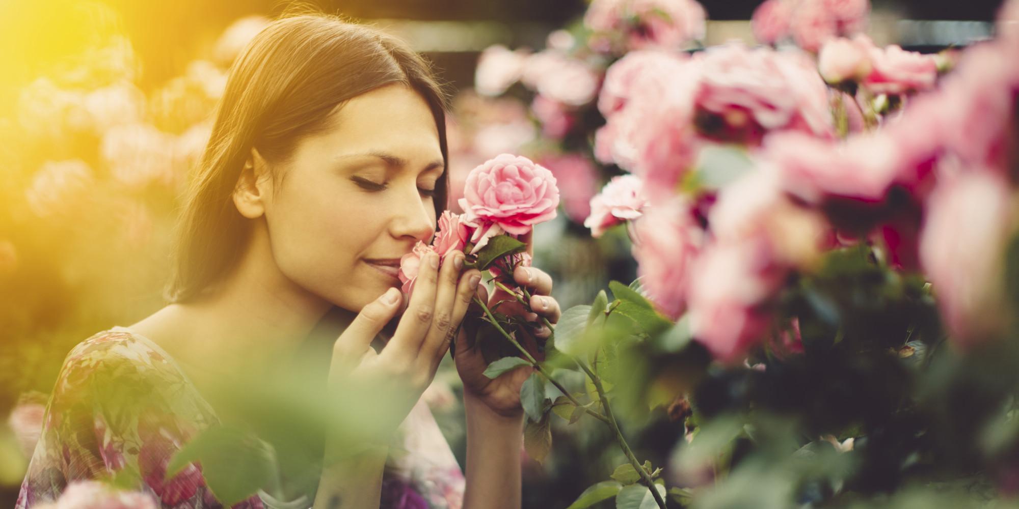 aroma-e-luleve-redukton-nivelin-e-stresit