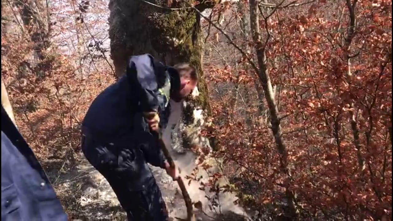 Bulqizë  zjarri përfshin 12 ha pyje FOTO