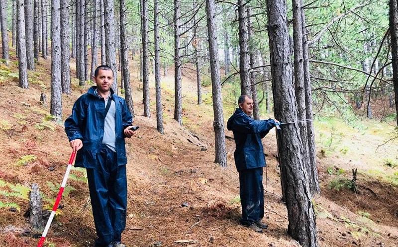 Regjistër dixhital për pyjet  Klosi  Inventar për moshën e gjëndjen e pemëve