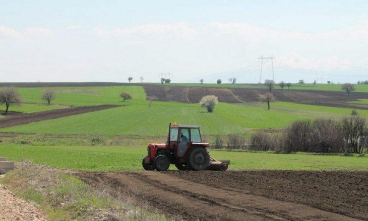 Bashkia e Pogradecit nis pajisjen e fermerëve me certifikata pronësie