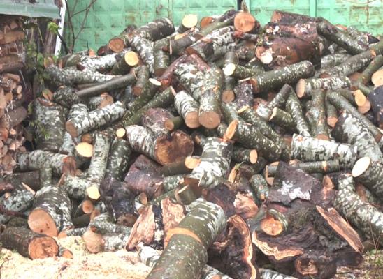 Shtrenjtohen drutë e zjarrit/ Banorët: Çmimi më i lartë se vitet e kaluara
