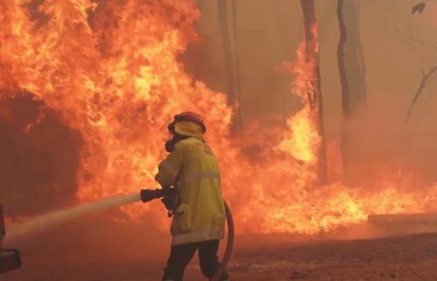 Zjarret djegin dhjetëra shtëpi në Australi/ Flakët shkrumbojnë mijëra hektarë me pyje