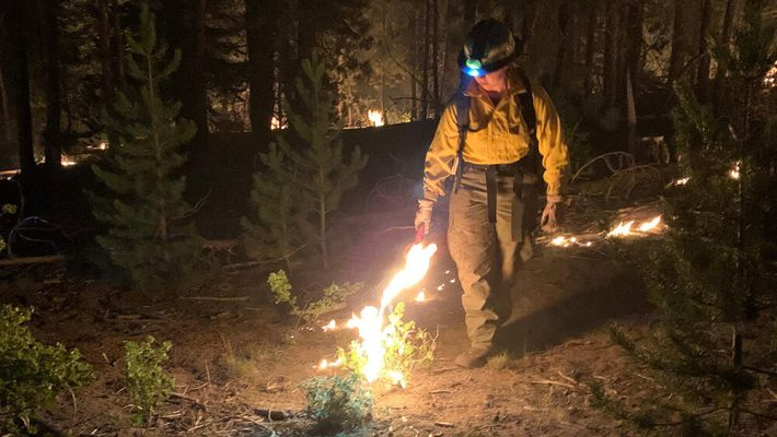 Shpërthejnë zjarret në SHBA, shkrumbohen mbi 1 mln hektarë