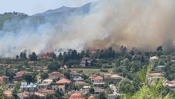 Athinë/ Zjarri kërcënon rrethinat, banorët ndihmojnë për shuarjen e flakëve