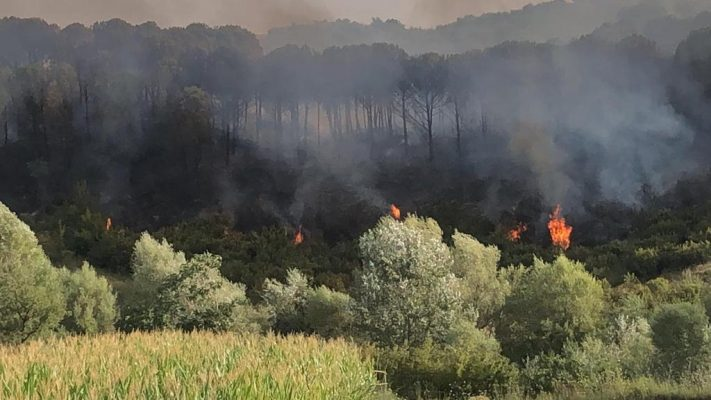 Dhjetëra vatra zjarri vetëm sot/ Situatë kritike në Karaburun dhe Kurbin