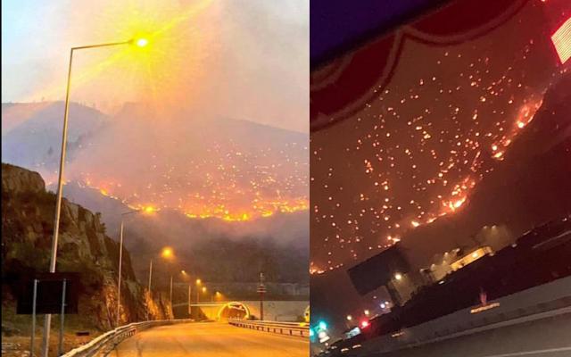 Dom Gjergj Meta për zjarret: Ta shpëtojmë edhe këtë pak Shqipëri që na ka mbetur
