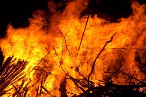 Po digjte ferrat/ Lushnjarit i del zjarri jashtë kontrollit, policia e vë në pranga