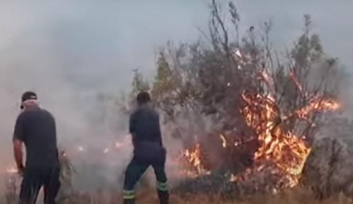Zjarr në Peqin, flakët rrezikojnë banesat