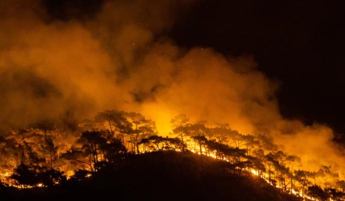 BE në krah të Turqisë/ 8 viktima nga zjarret, situatë e rënduar edhe në Greqi