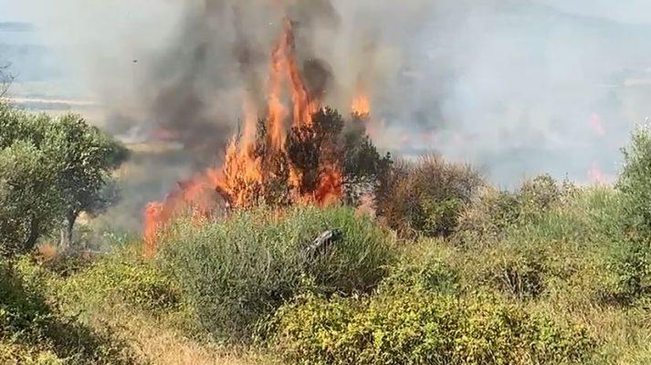 Zjarret në fshatrat e Vlorës, jashtë kontrollit/ Flakët bllokojnë rrugën