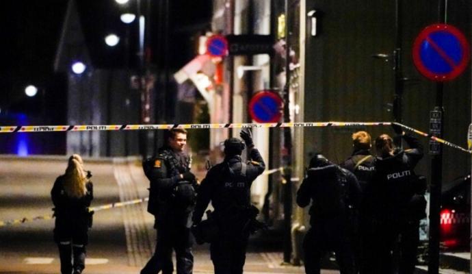 Pesë të vdekur nga sulmi me hark dhe shigjeta në Norvegji