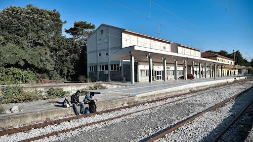 Tre emigrantë goditen për vdekje nga treni në Francë